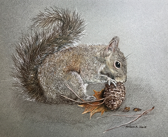 Squirrel Eating Pinecone